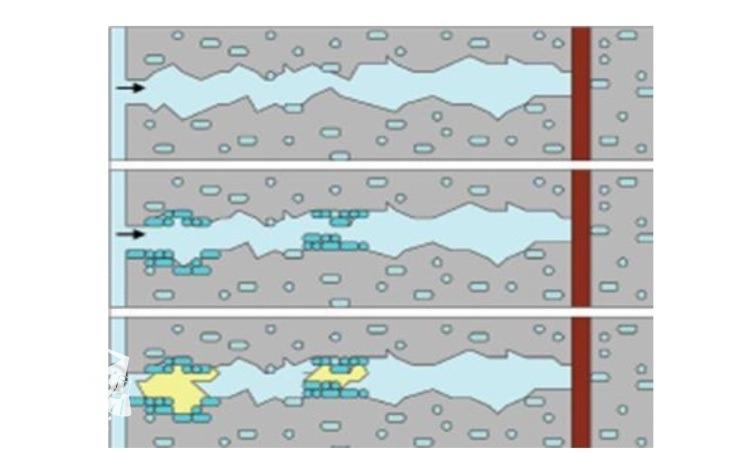 ساز و کار ترمیم خرابی با استفاده از باکتری ها